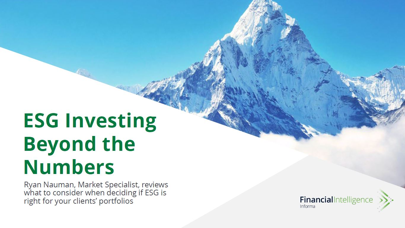 ESG Investing Beyond the Numbers