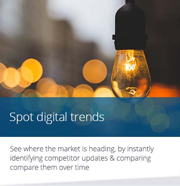 Spot Digital Trends